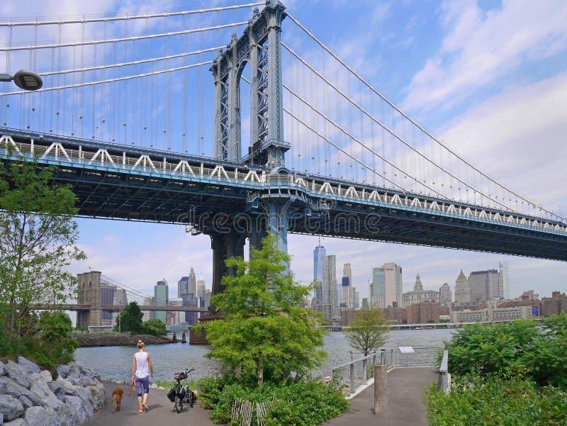 parque abaixo das pontes de Manhattan e de Brooklyn imagens de stock royalty free