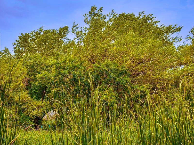 Parque abandonado paisaje imagen de archivo