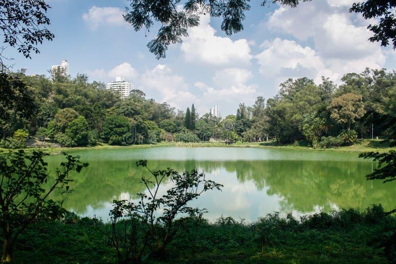 Parque Aclimação São Paulo royaltyfri bild