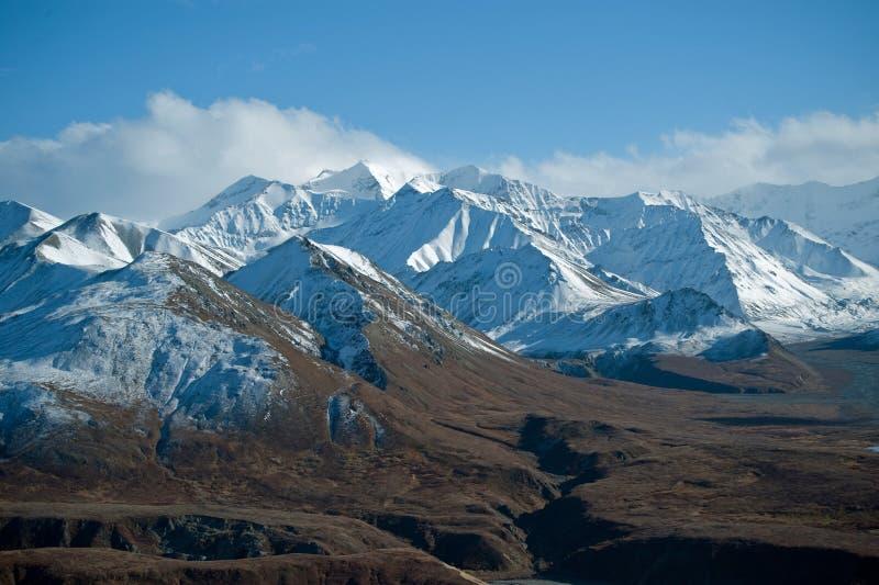 Parque Alaska de Denali fotos de archivo libres de regalías