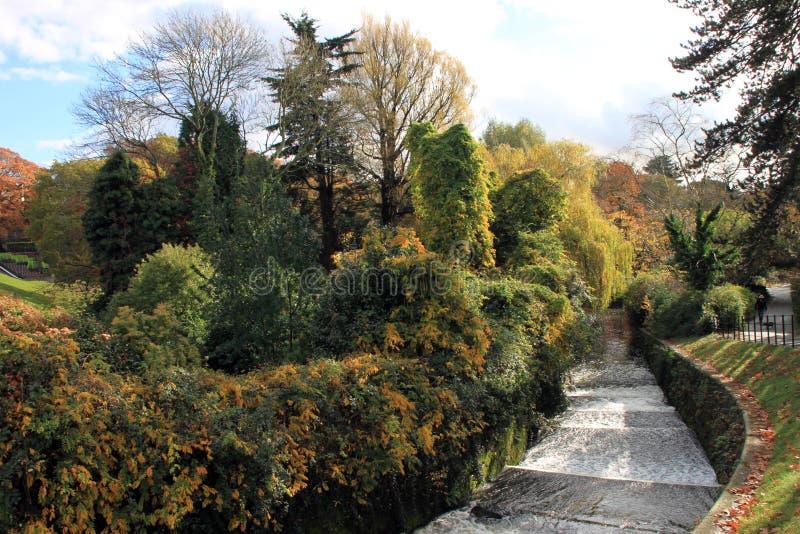Parque Arburetium Cardiff de Roath fotografia de stock