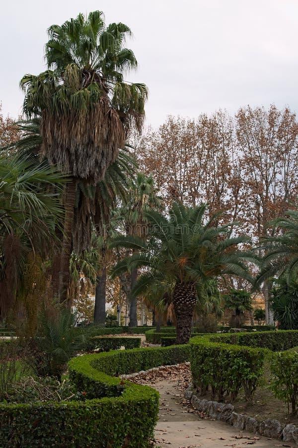 Parque asombroso de la belleza con las calzadas de la bobina Palermo sicilia imágenes de archivo libres de regalías