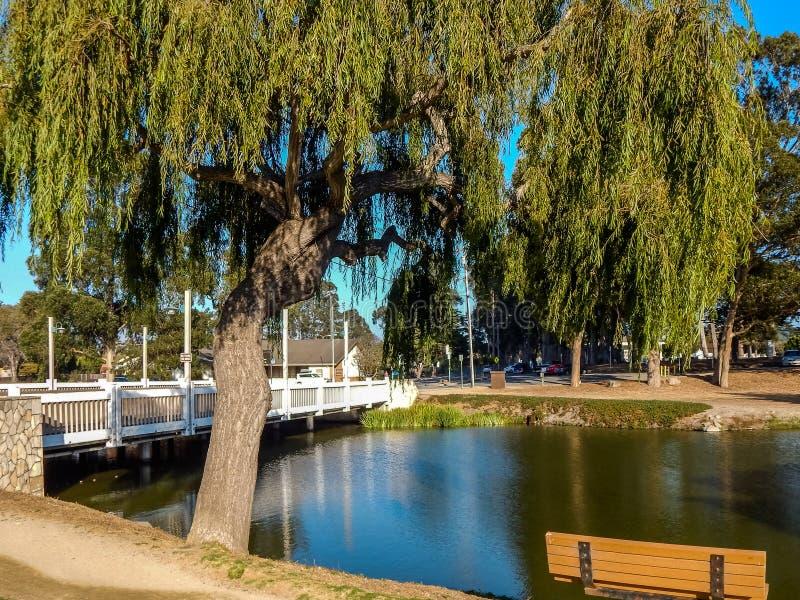Parque asombroso en Santa Cruz California fotografía de archivo