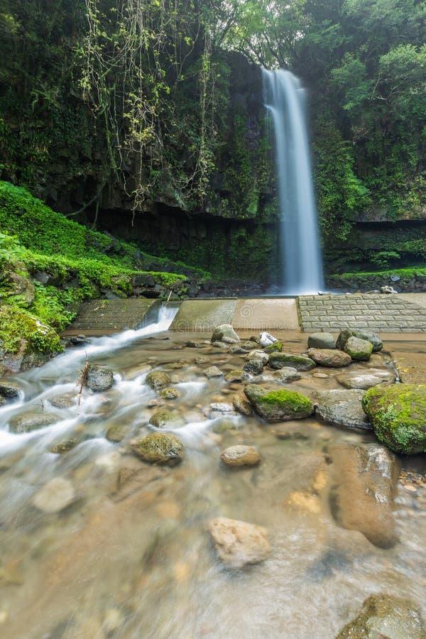 Parque bonito da cachoeira de Kamikawa Otaki em Kagoshima, Japão imagem de stock royalty free
