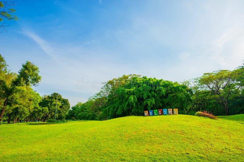 Parque bonito da cena do parque em público com campo de grama verde, gree imagem de stock