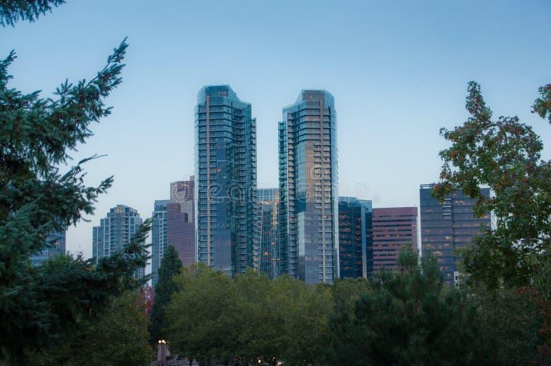Parque céntrico de Bellevue por la tarde foto de archivo libre de regalías