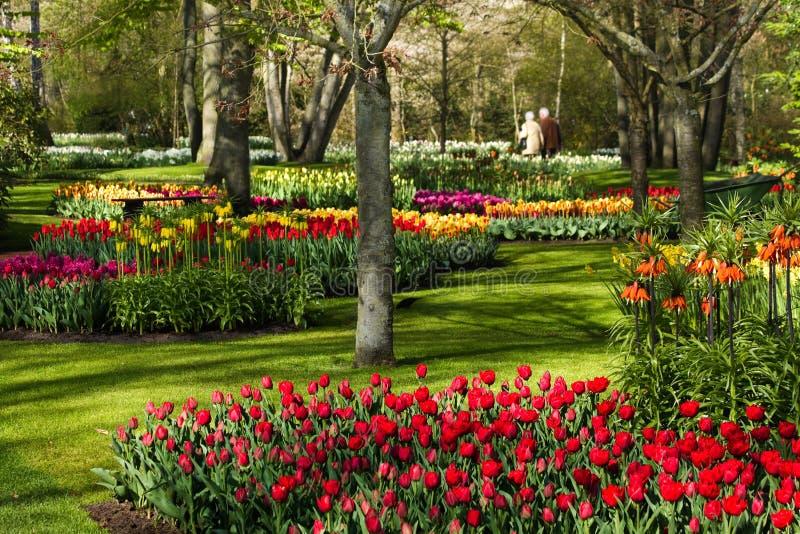 Parque colorido en resorte imagen de archivo libre de regalías