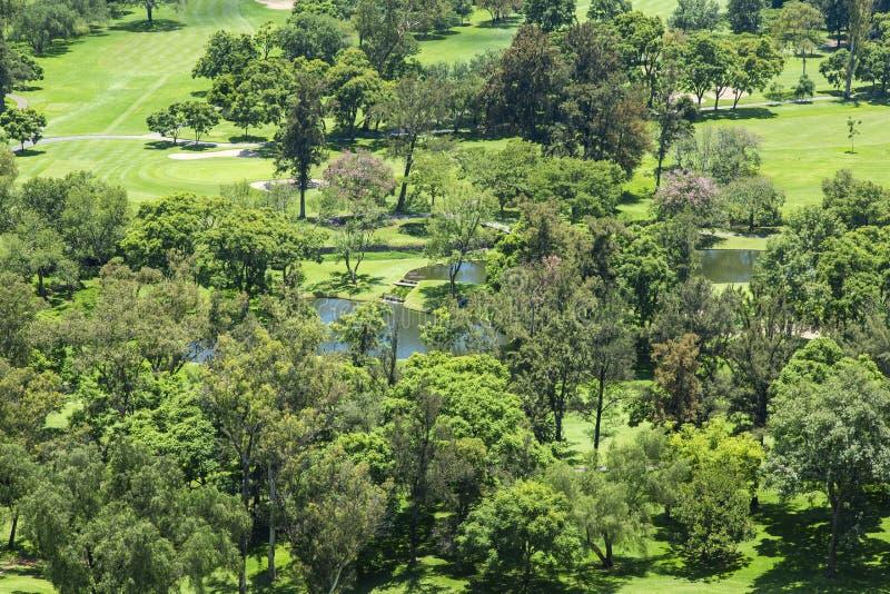 Parque com áreas verdes foto de stock royalty free