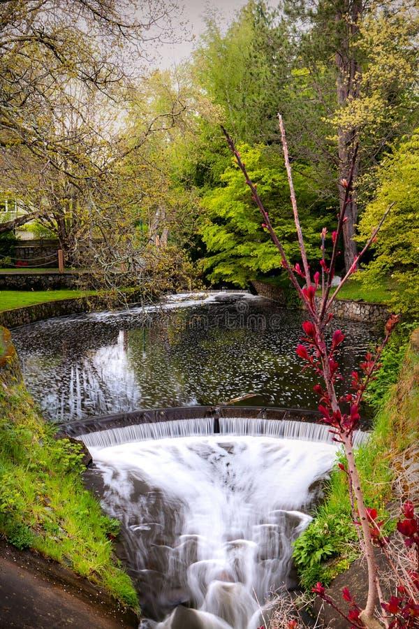 Parque con la cascada en suburbios de Victoria Island, Canadá foto de archivo libre de regalías