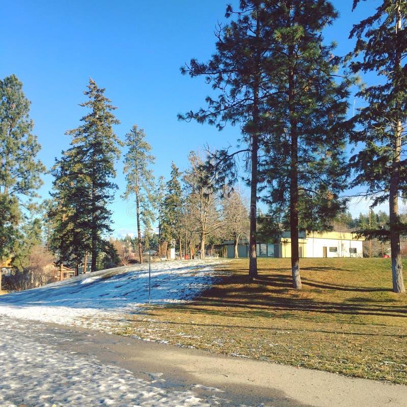 Parque con la hierba y nieve en el pavimento y el campo en invierno fotografía de archivo libre de regalías