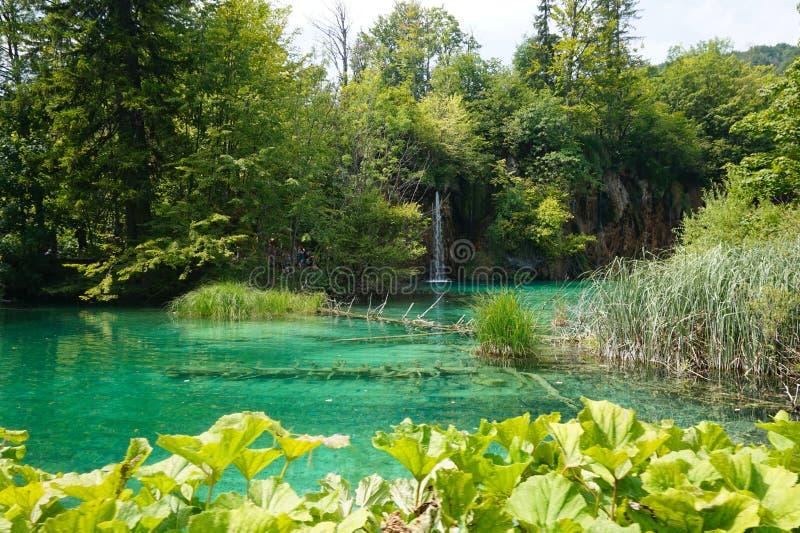 Parque-Croácia nacional dos lagos Plitvice Na tarde no verão imagem de stock royalty free