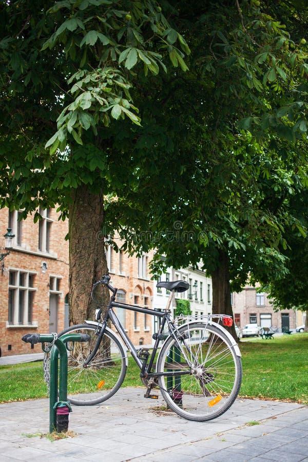 Parque da bicicleta da cidade na árvore imagens de stock