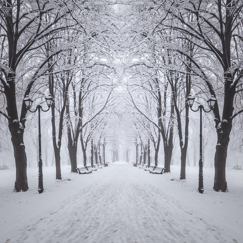 Parque da cidade do inverno fotos de stock royalty free