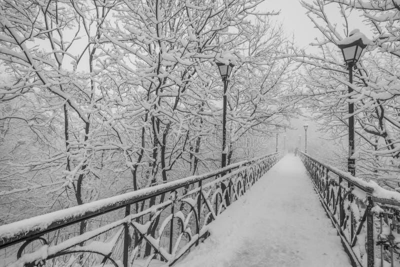 Parque da cidade do inverno. Os amantes constroem uma ponte sobre em Kiev. fotografia de stock royalty free
