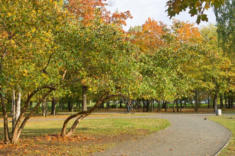 Parque da cidade do outono imagens de stock