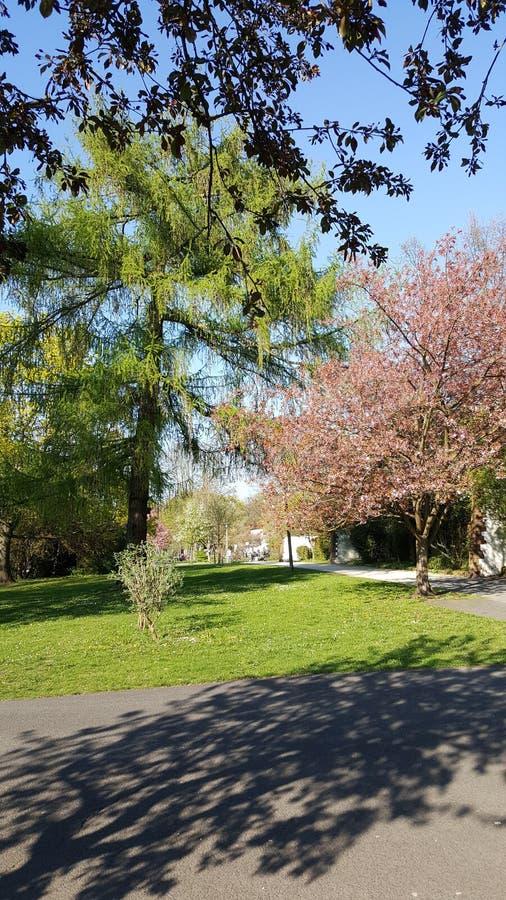 Parque da cidade do rnberger do ¼ de NÃ foto de stock royalty free