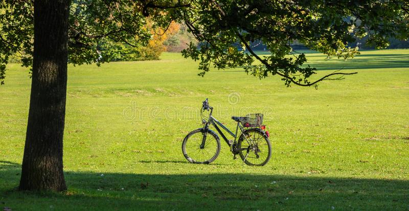 Parque da cidade em Munich, Alemanha Vista de uma bicicleta em um campo verde na tarde imagem de stock