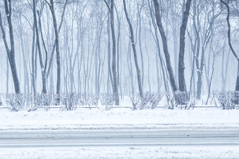 Parque da cidade no inverno Área de recreação da cidade durante a queda de neve Tempestade de neve e blizzard pesados da previsão imagens de stock royalty free
