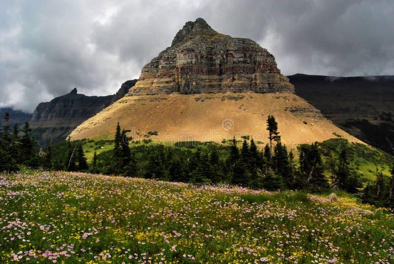 Parque da geleira de Montana foto de stock