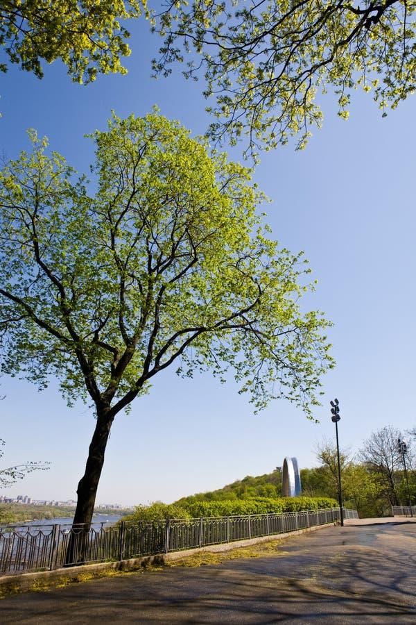 Download Parque da mola imagem de stock. Imagem de folha, paisagem - 12805261