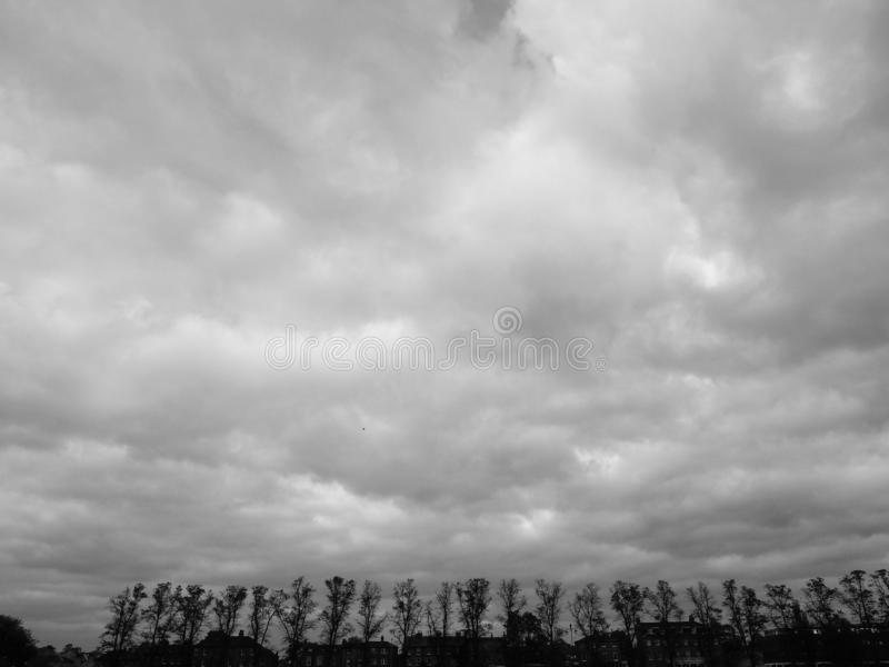 Parque da parte de Parker em Cambridge em preto e branco fotos de stock royalty free