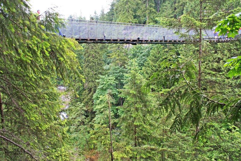 Parque da ponte de suspensão de Capilano, Vancôver imagem de stock