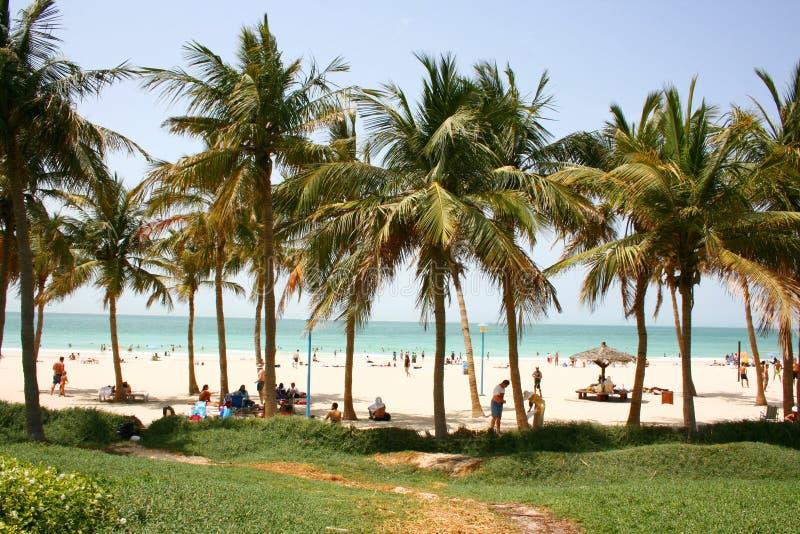 Parque da praia de Jumeirah fotografia de stock
