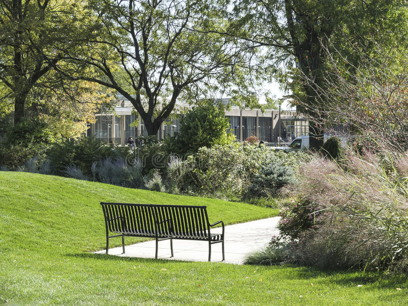 Parque da Universidade de Chicago fotografia de stock royalty free
