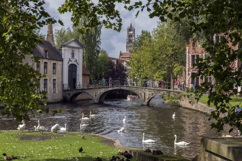 Parque de Ла Vina - Брюгге в Бельгии стоковое изображение rf