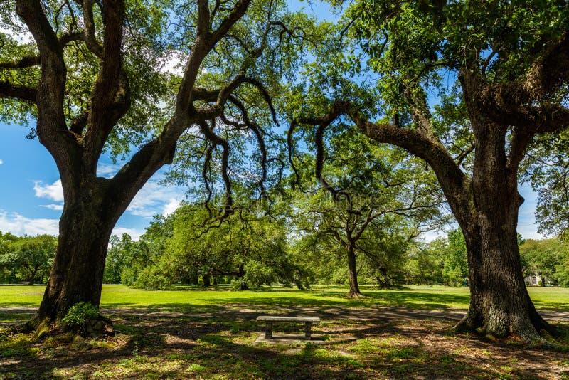 Parque de Audubon foto de archivo libre de regalías
