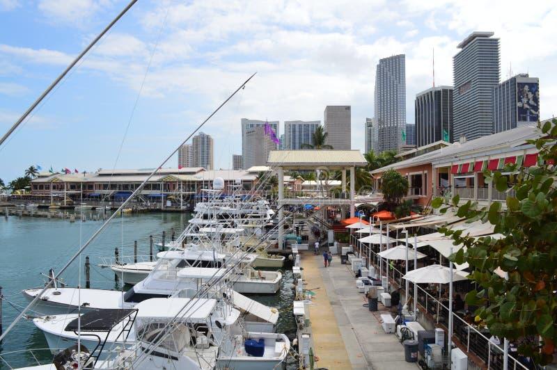 Parque de Bayfront em Miami fotografia de stock