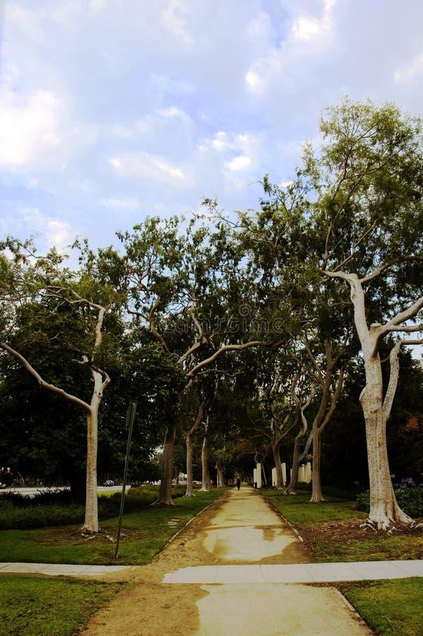 Parque de Beverly Hills fotografia de stock