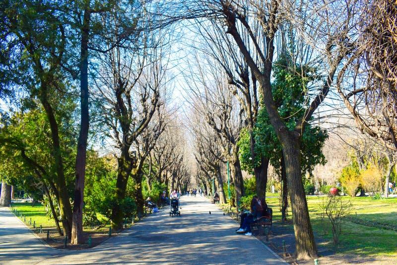 Parque de Cishmigiu fotos de archivo