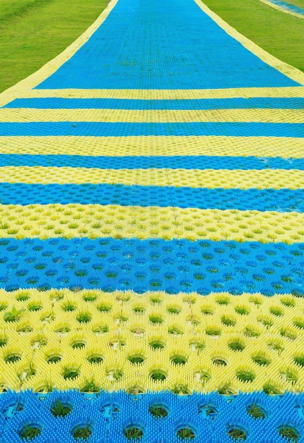 Download Parque De Esqui Zombado Ao Ar Livre Foto de Stock - Imagem de unidade, área: 26517966