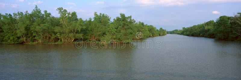 Parque de estado de Fausse Pointe do lago foto de stock