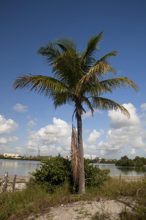 Parque de estado del río de Oleta fotografía de archivo libre de regalías