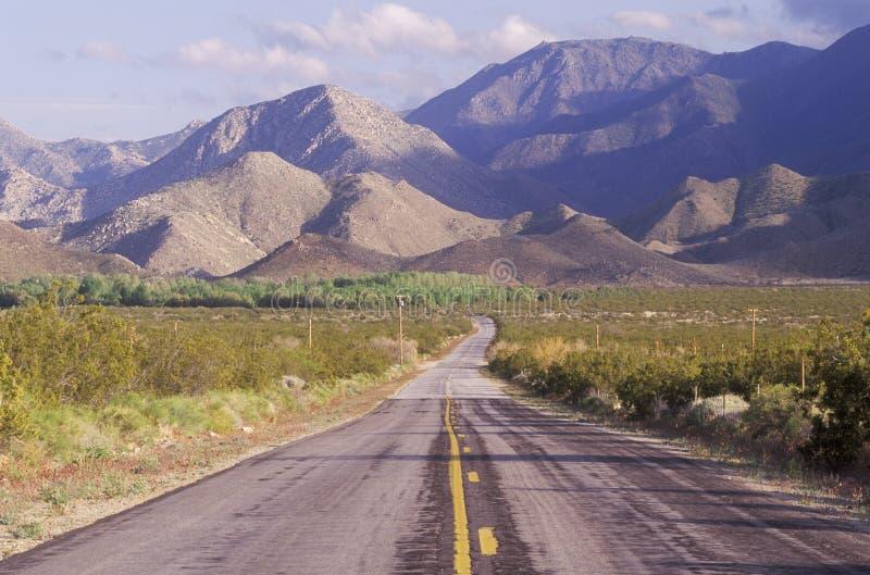Parque de estado do deserto de Anza-Borrego, Califórnia imagens de stock royalty free