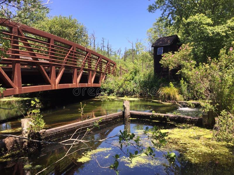 Parque de Estados de Nova Iorque de Connetquot da ponte de Bunce fotografia de stock royalty free