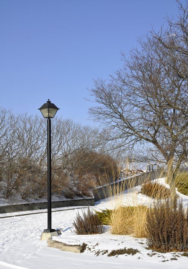 Parque de Galt, inverno imagem de stock royalty free