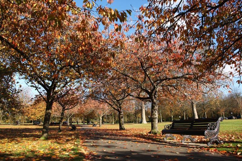 Parque de Greenwich em cores do outono imagens de stock