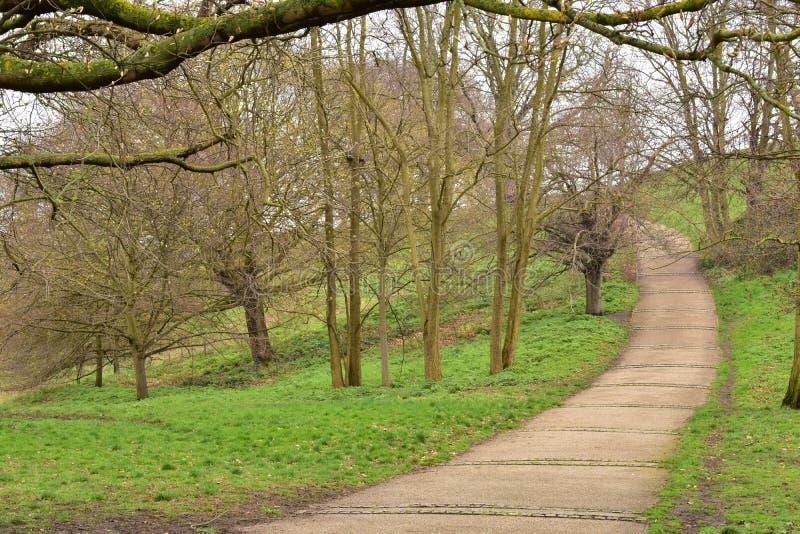 Parque de Greenwich em Londres fotografia de stock royalty free