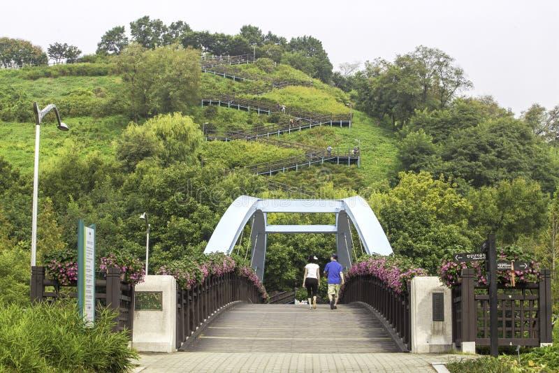 Parque de Haneul no verão em Seoul, Coreia do Sul imagem de stock royalty free