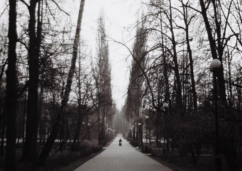 Parque de Izmailovo fotos de stock