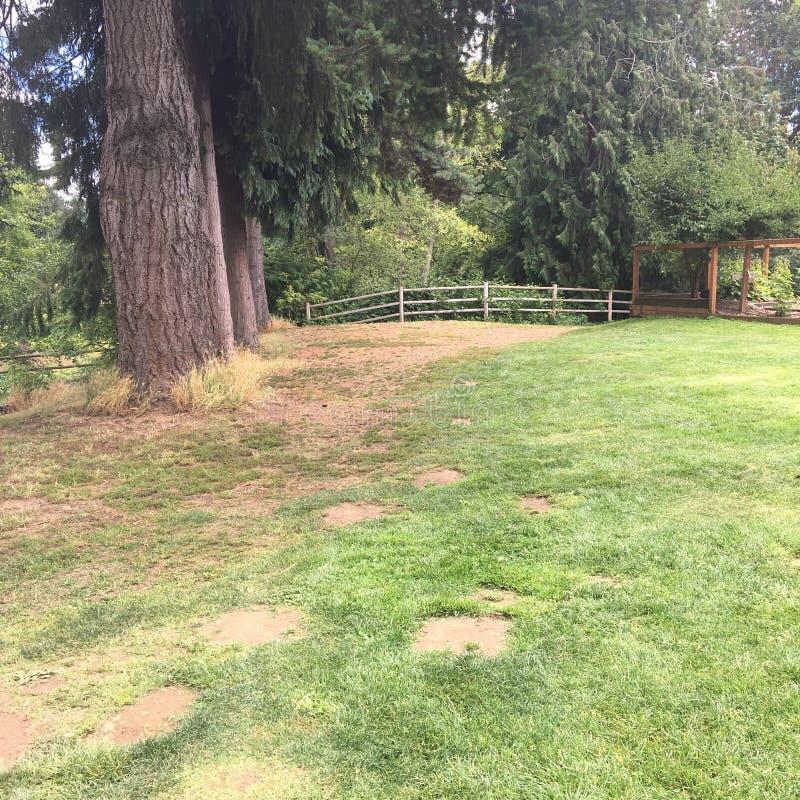 Parque de Jennings imagens de stock royalty free