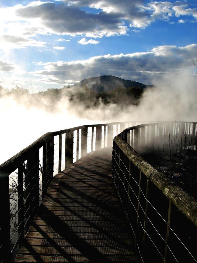 Parque de Kuirau, Rotorua imágenes de archivo libres de regalías
