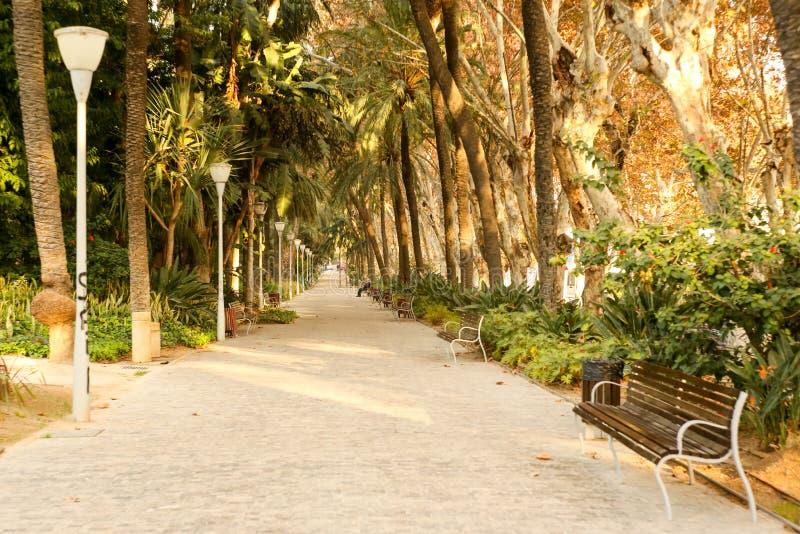 Parque de la Alameda Malaga Spain Andalucia. Beautiful sunny afternoon in Parque de la Alameda Andalucia Malaga Spain. Picture taken in december 2015 royalty free stock photos