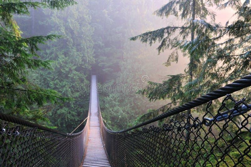 Parque de la barranca de Lynn y puente de suspensión imagenes de archivo
