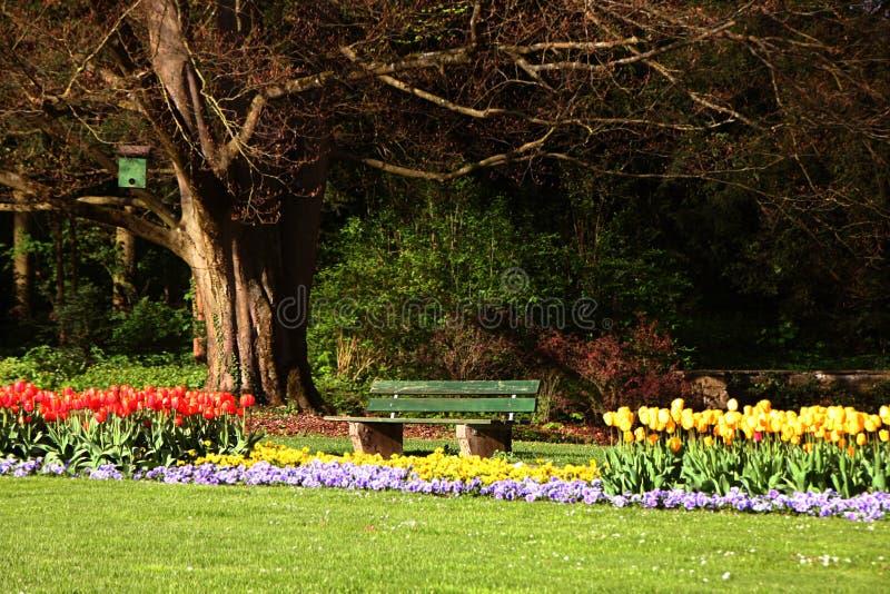 Download Parque de la ciudad imagen de archivo. Imagen de verde - 44853705