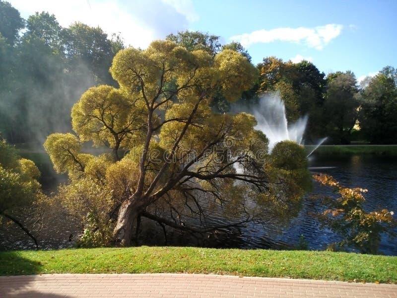 Parque de la ciudad foto de archivo libre de regalías