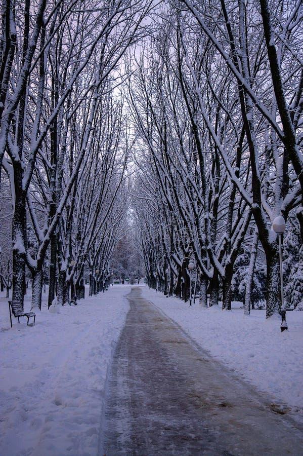 Parque de la ciudad del invierno imagen de archivo